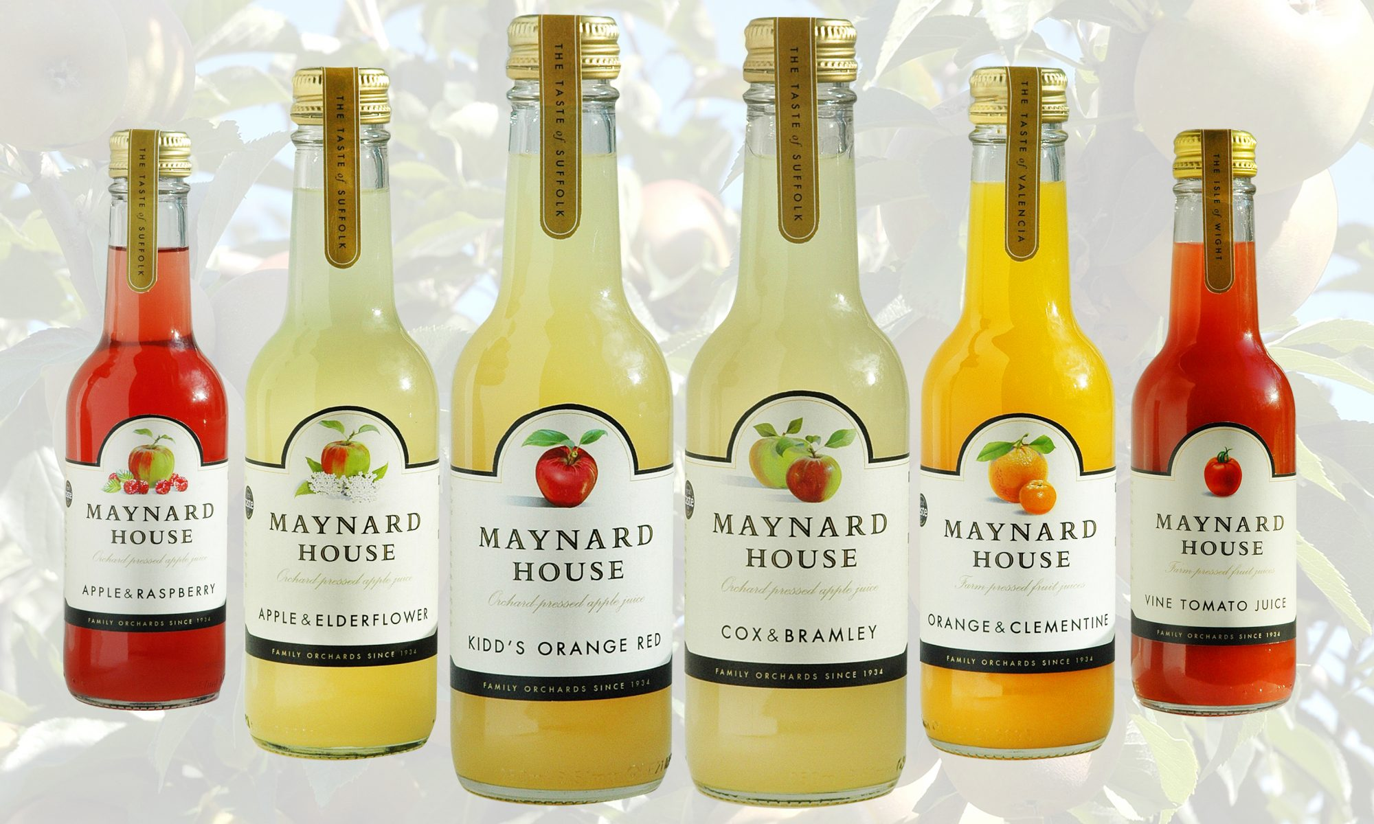 Maynard House 250ml Apple Juice